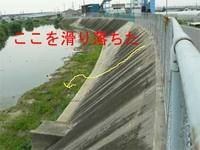 20060610_kame_2